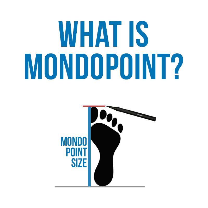 What is MondoPoint and how do we measure it?